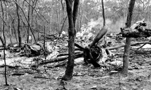 The wreckage of the plane carrying Dag Hammarskjöld in a forest near Ndola in what is now Zambia. Photograph: AP